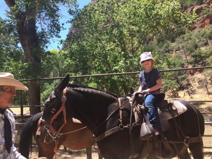 Virgin River Rides at Zion National Park 2015